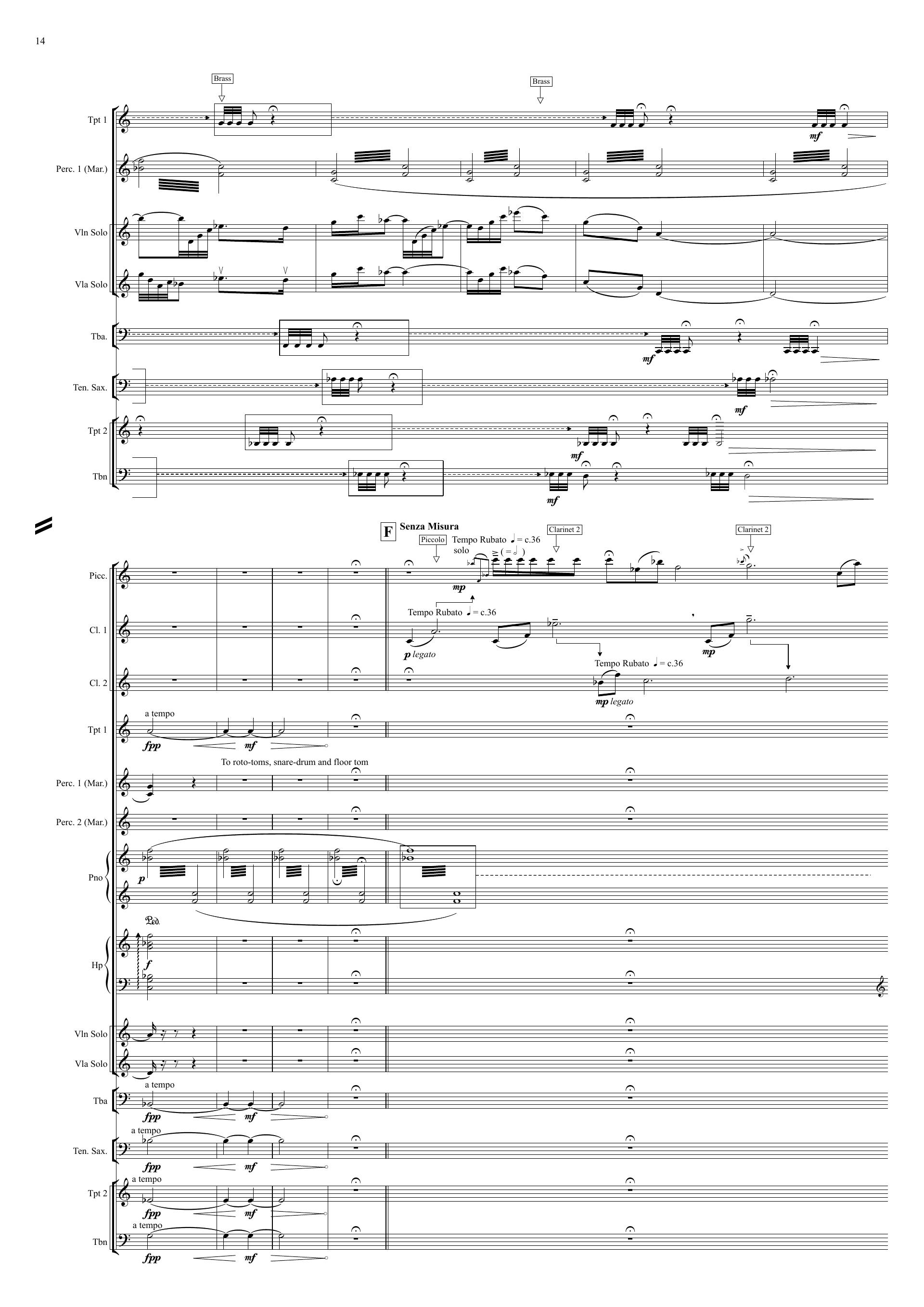Christopher Best Panaura (2006) - Full score sample